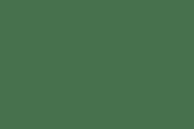 SALE FLOWERGILS DRESSES